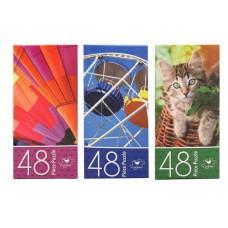 Basic Puzzle Asst w/48 Pcs