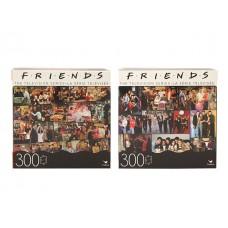Friends Puzzle Asst w/300 pcs
